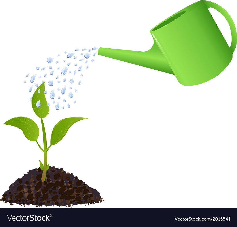 Green young plant with watering can vector | Price: 1 Credit (USD $1)