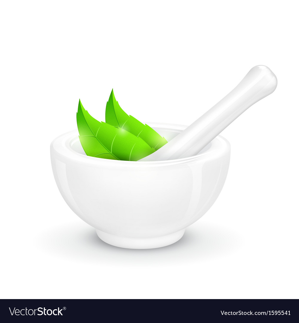 Mortar and pestle with herb vector | Price: 1 Credit (USD $1)