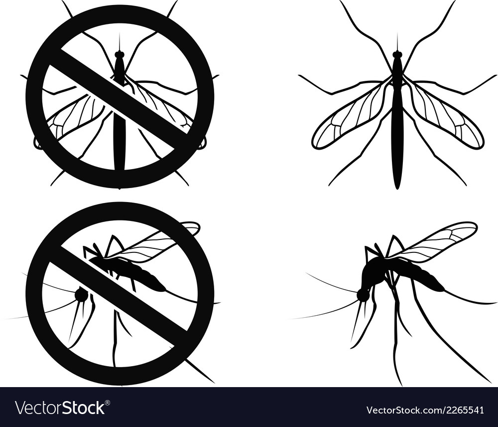 Mosquitoes warning symbol vector | Price: 1 Credit (USD $1)
