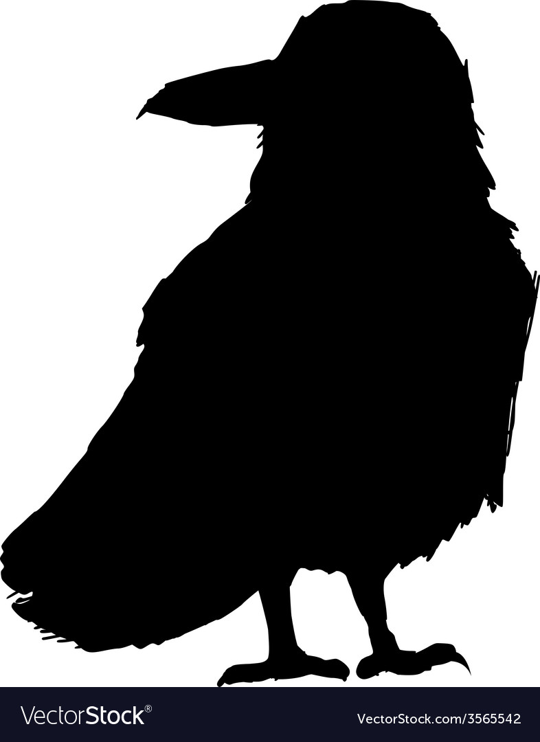 Raven vector | Price: 1 Credit (USD $1)