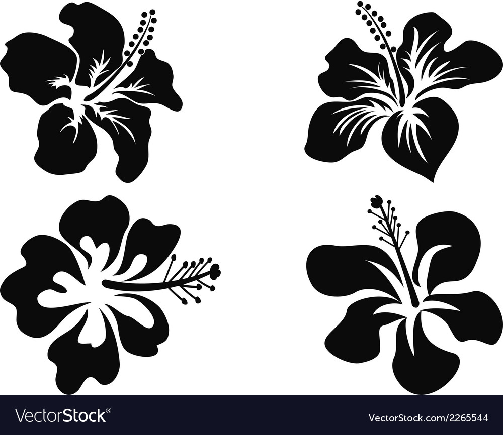 Hibiscus silhouettes vector | Price: 1 Credit (USD $1)