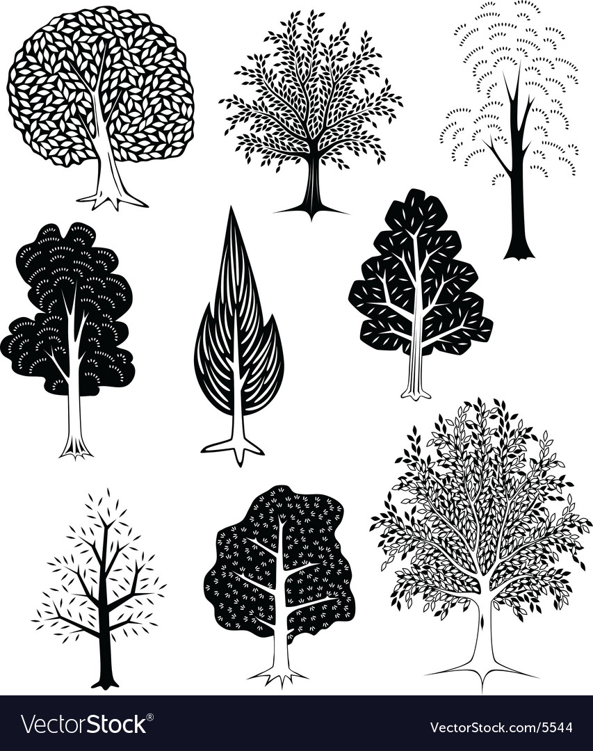 Trees vector | Price: 3 Credit (USD $3)