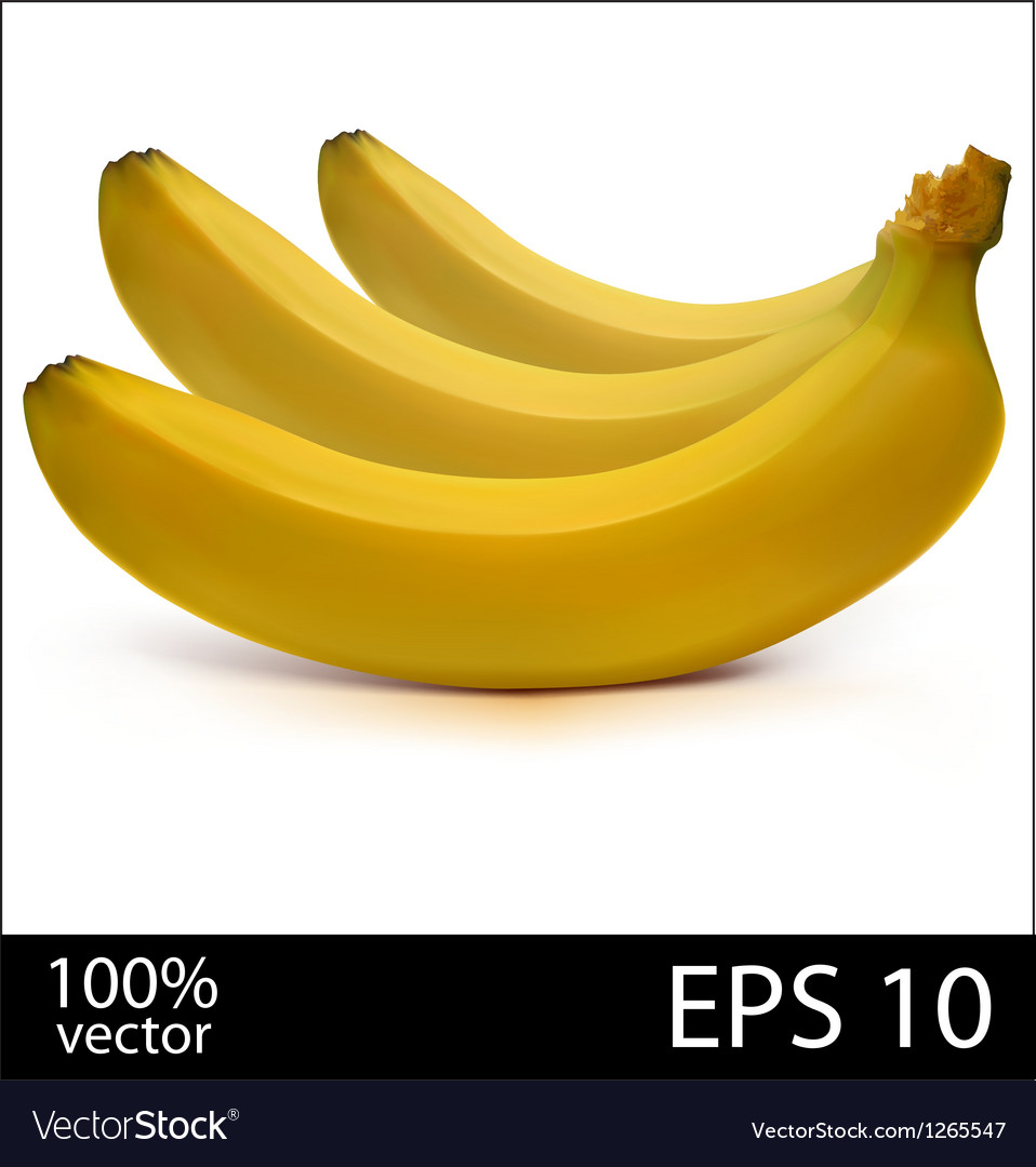 Three bananas in batch vector | Price: 1 Credit (USD $1)