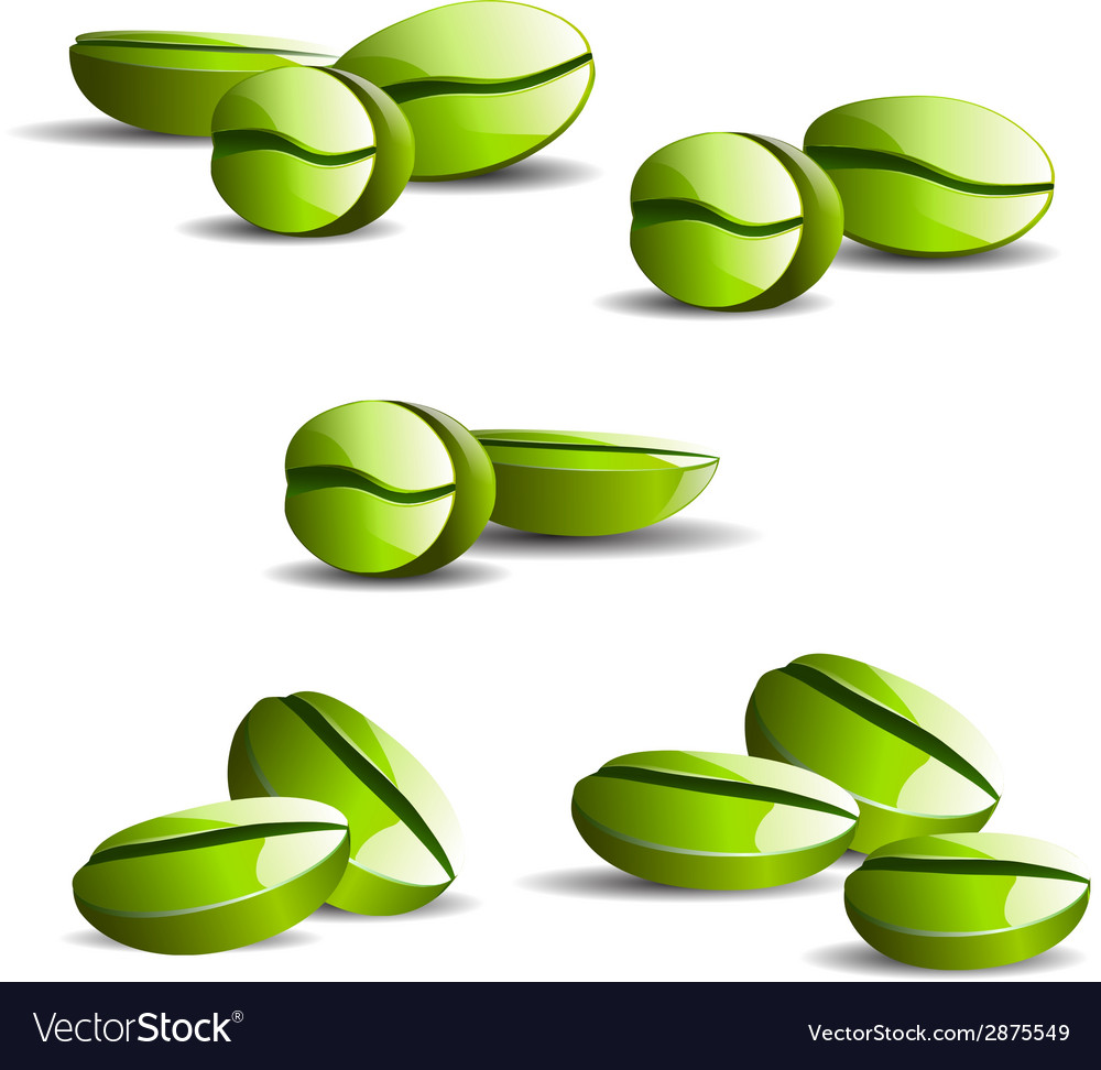 Single coffee green bean with leaf isolated vector | Price: 1 Credit (USD $1)