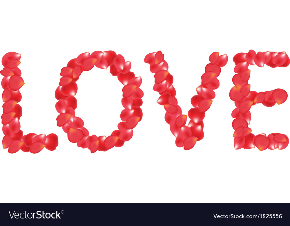 Petals love vector | Price: 1 Credit (USD $1)