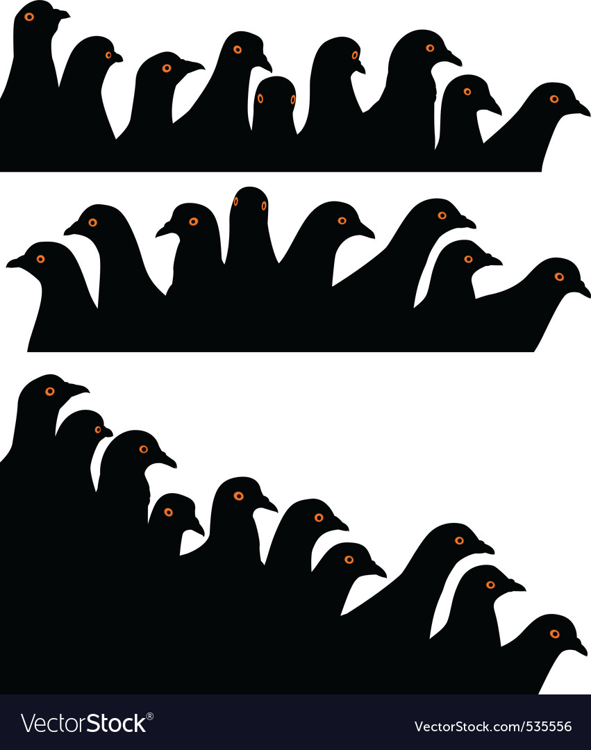 Pigeon heads vector | Price: 1 Credit (USD $1)