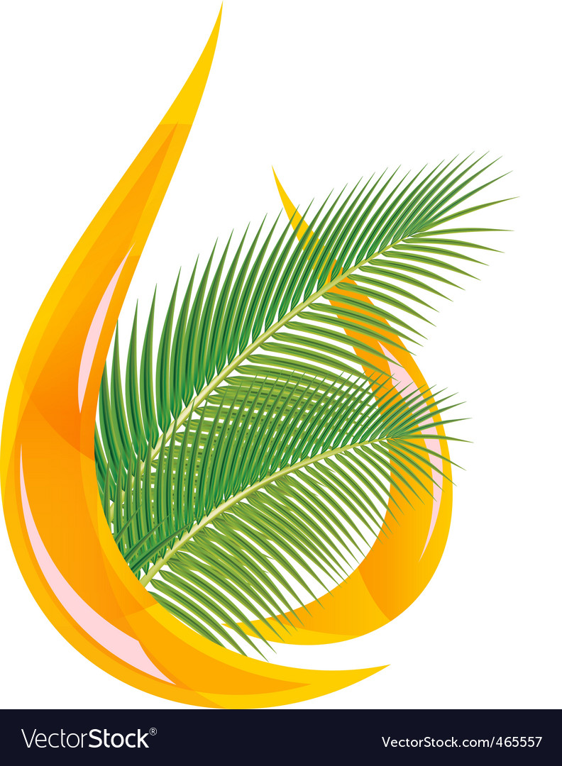 Palm oil vector | Price: 1 Credit (USD $1)