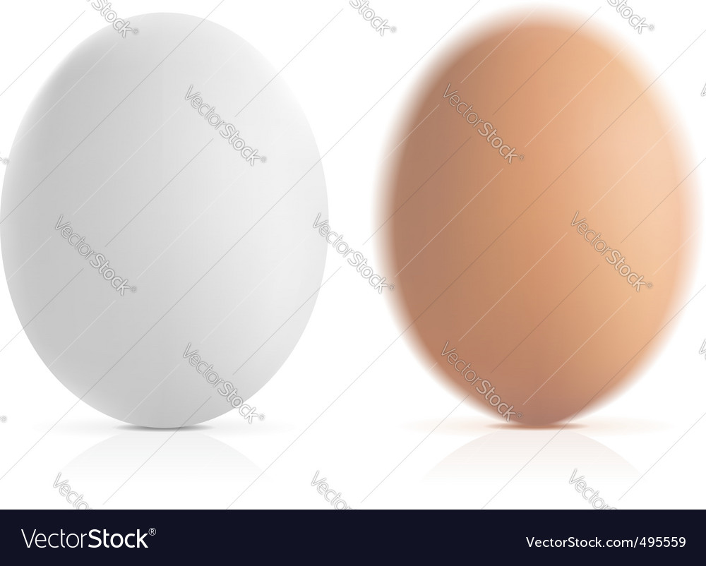 And white vector eggs vector | Price: 1 Credit (USD $1)
