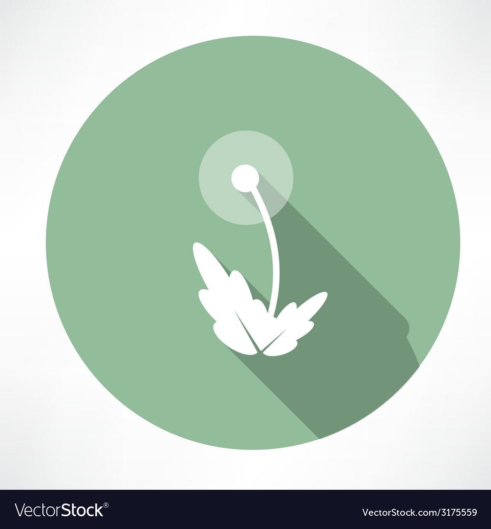 Dandelion icon vector | Price: 1 Credit (USD $1)