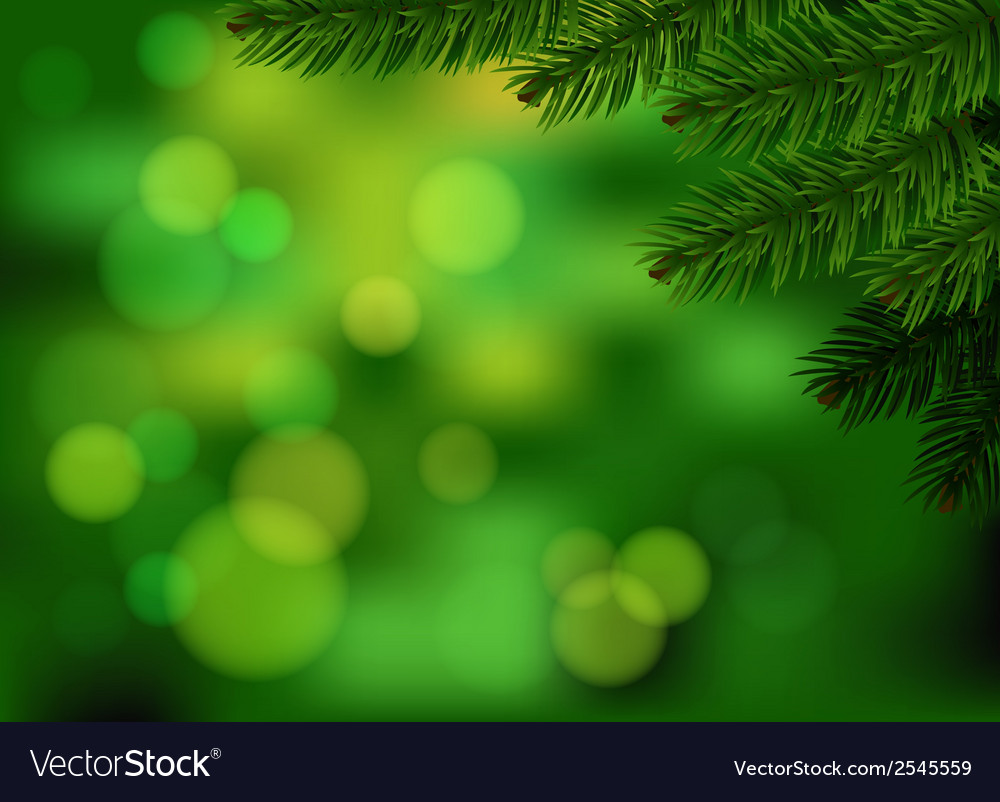 Green fir branch background vector | Price: 1 Credit (USD $1)