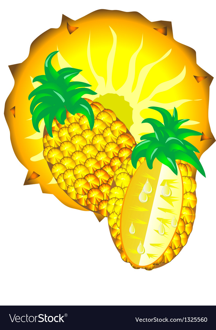 Sliced pineapple vector | Price: 1 Credit (USD $1)