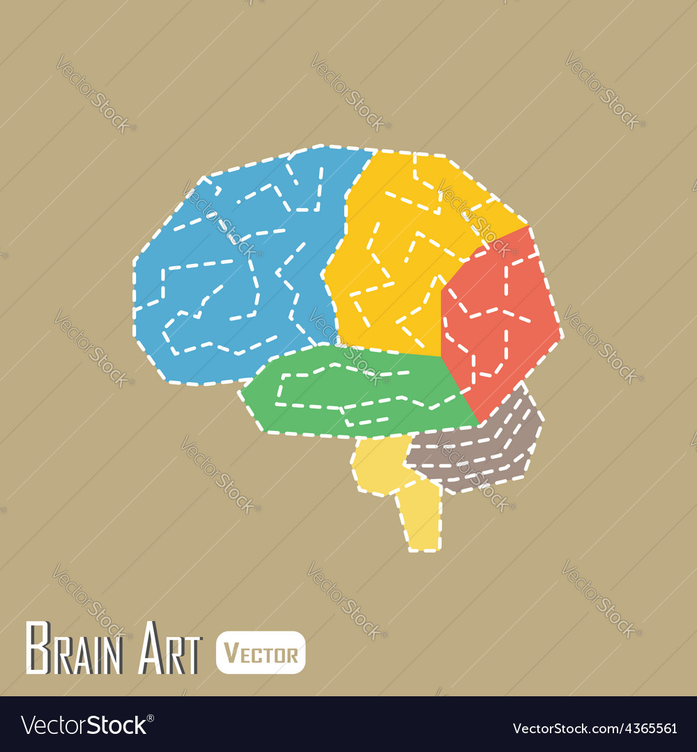 Brain anatomy vector | Price: 1 Credit (USD $1)