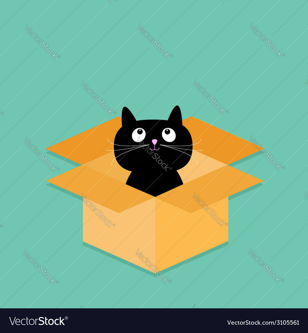 Cat inside opened cardboard package box flat vector | Price: 1 Credit (USD $1)