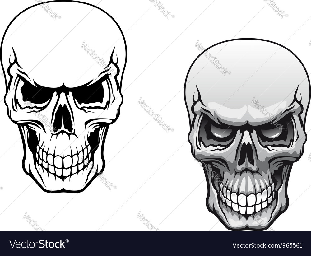 Human skulls vector | Price: 1 Credit (USD $1)