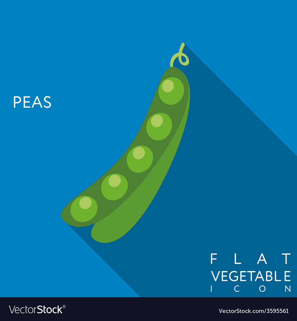 Pea flat icon with long shadow vector | Price: 1 Credit (USD $1)