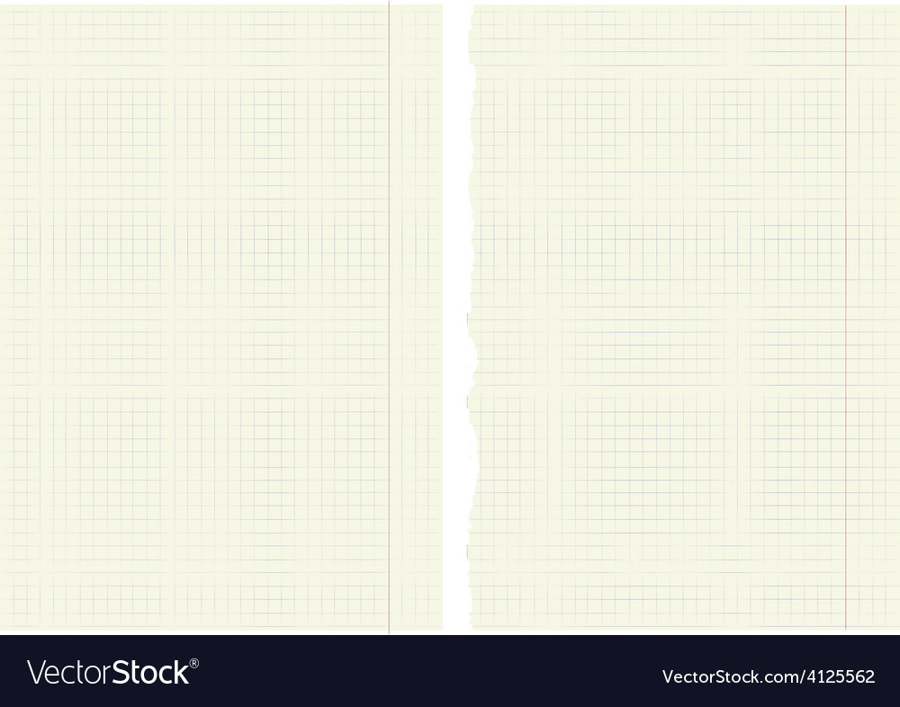 Sheets from a notebook in a cage vector | Price: 1 Credit (USD $1)