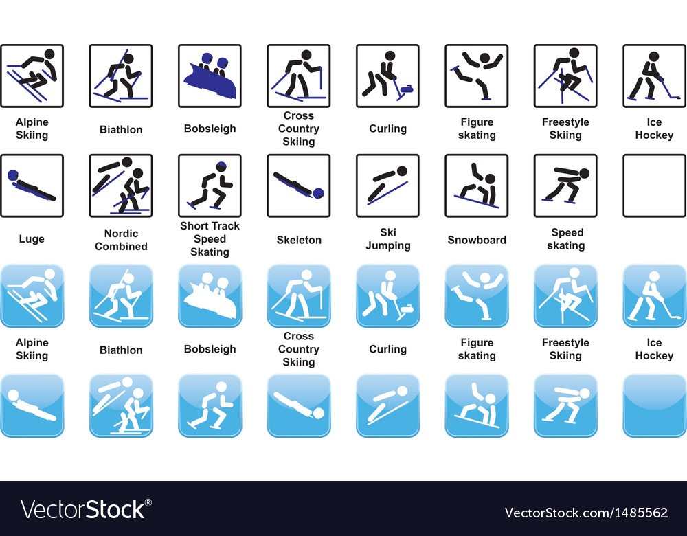 Winter sports icons vector | Price: 1 Credit (USD $1)