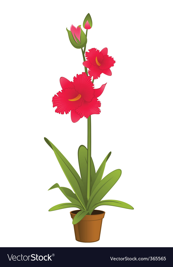 Flower pot vector | Price: 1 Credit (USD $1)