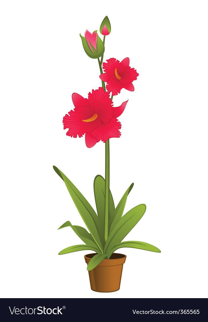 Flower pot vector   Price: 1 Credit (USD $1)