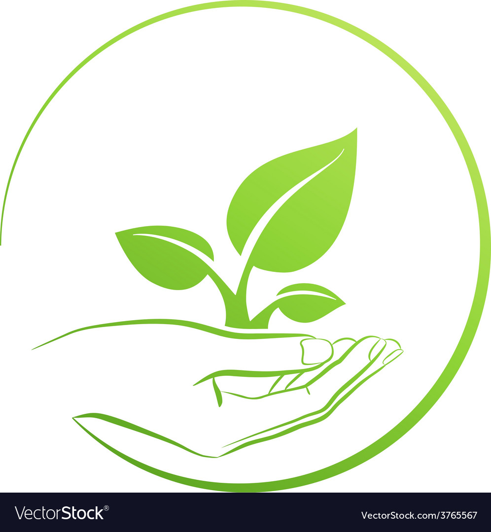 Hand holding plant logo growth concept vector | Price: 1 Credit (USD $1)