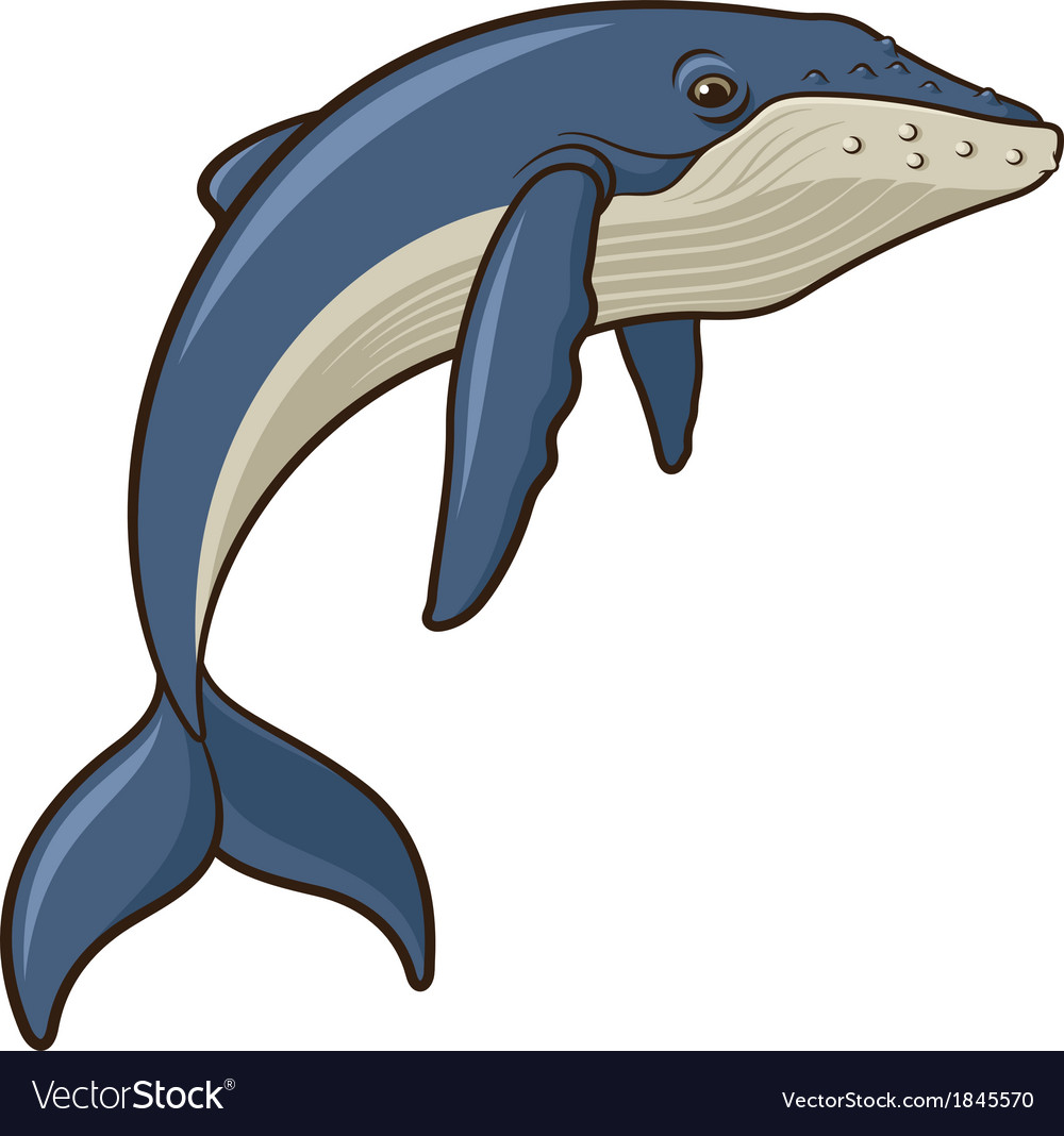 Whale vector | Price: 3 Credit (USD $3)