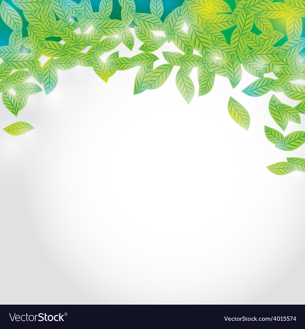 Summer branch with fresh green leaves on white vector | Price: 1 Credit (USD $1)