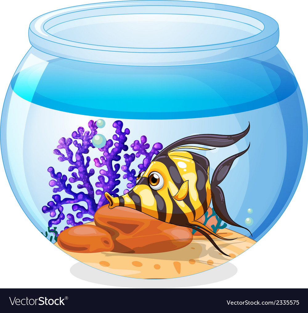 A fish inside the jar vector | Price: 1 Credit (USD $1)