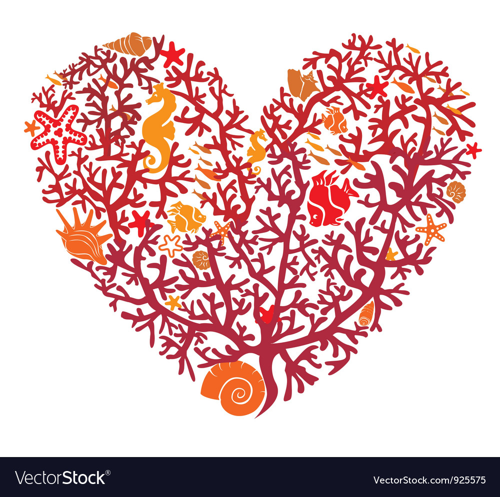 Heart is made of corals isolated on white vector | Price: 1 Credit (USD $1)