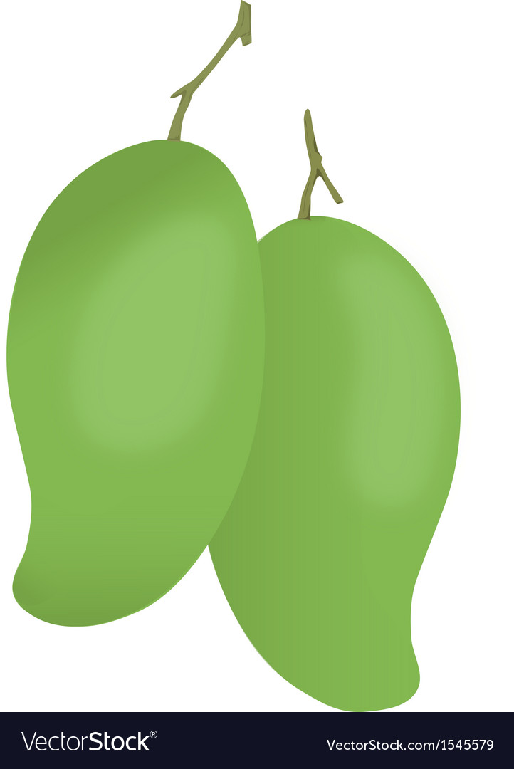 Mango vector | Price: 1 Credit (USD $1)