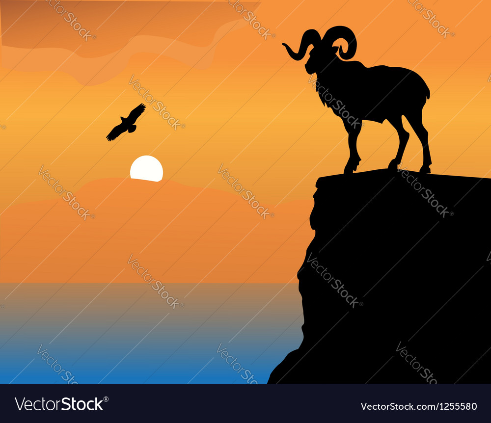 Mountain goat on a rock vector | Price: 1 Credit (USD $1)