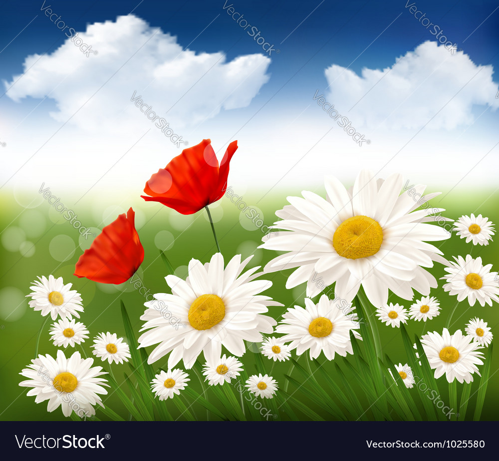 Nature background with beautiful flowers and blue vector | Price: 3 Credit (USD $3)