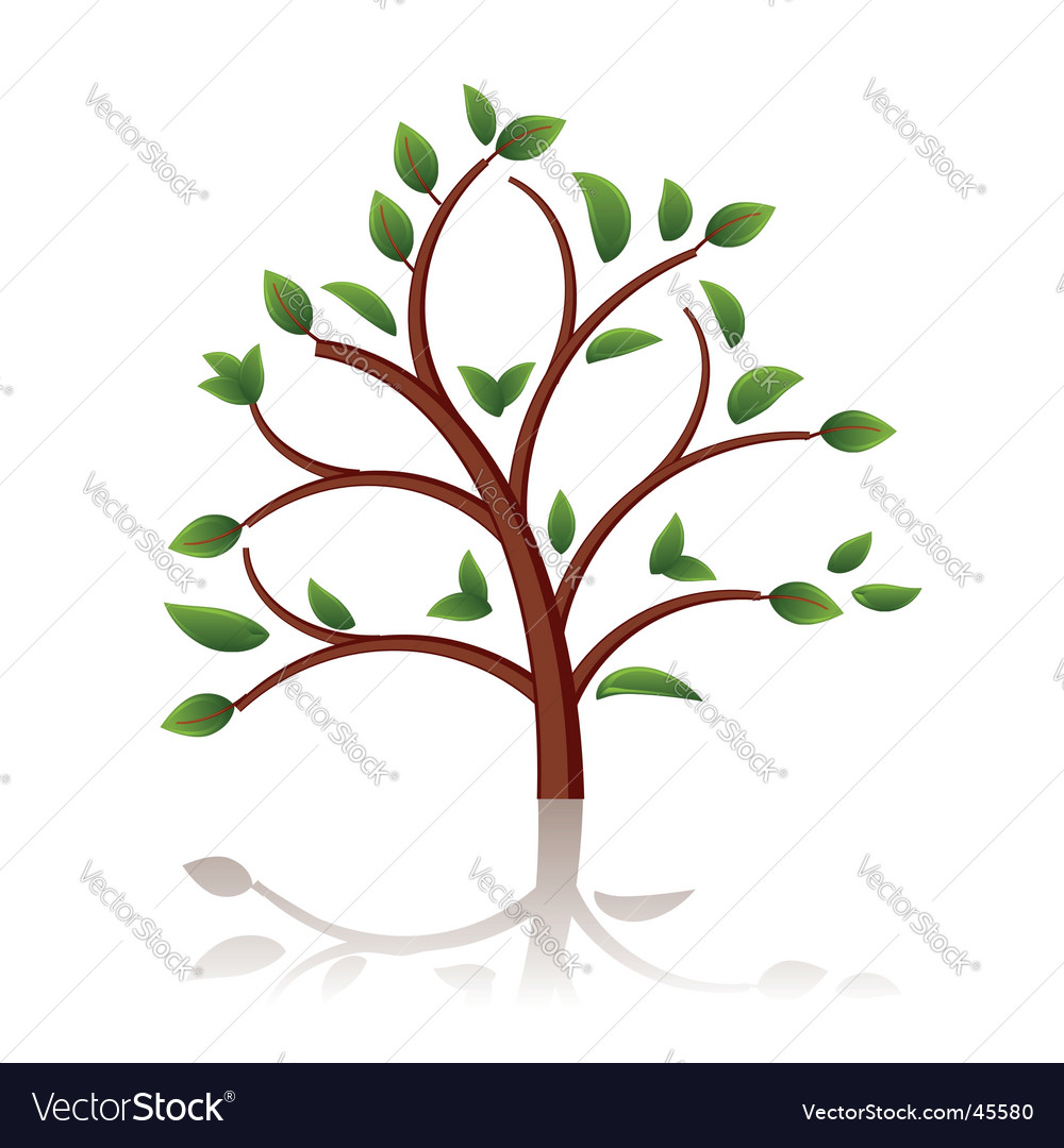 Tree beautiful vector | Price: 1 Credit (USD $1)