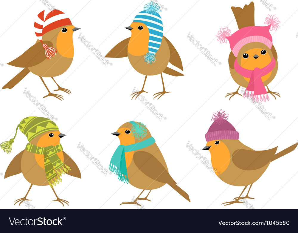 Winter robins vector | Price: 1 Credit (USD $1)