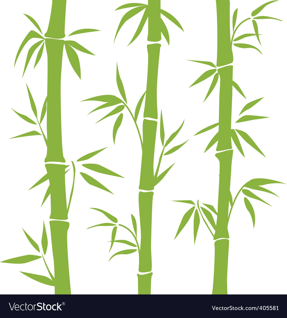 Bamboo vector | Price: 1 Credit (USD $1)