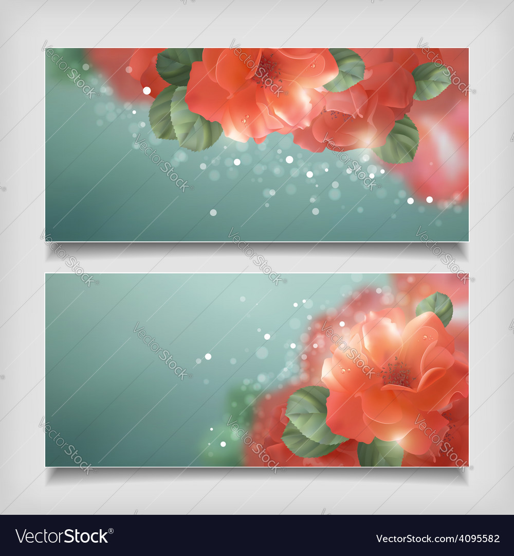Shining flowers roses banner vector | Price: 3 Credit (USD $3)