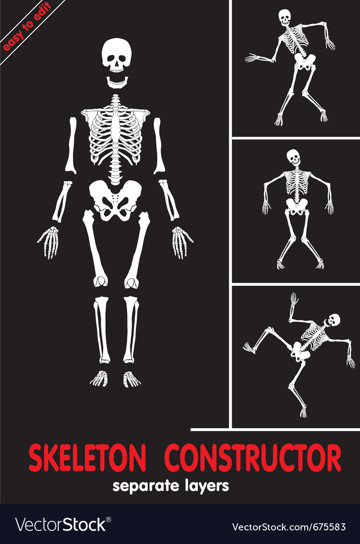 Skeleton constructor vector | Price: 1 Credit (USD $1)