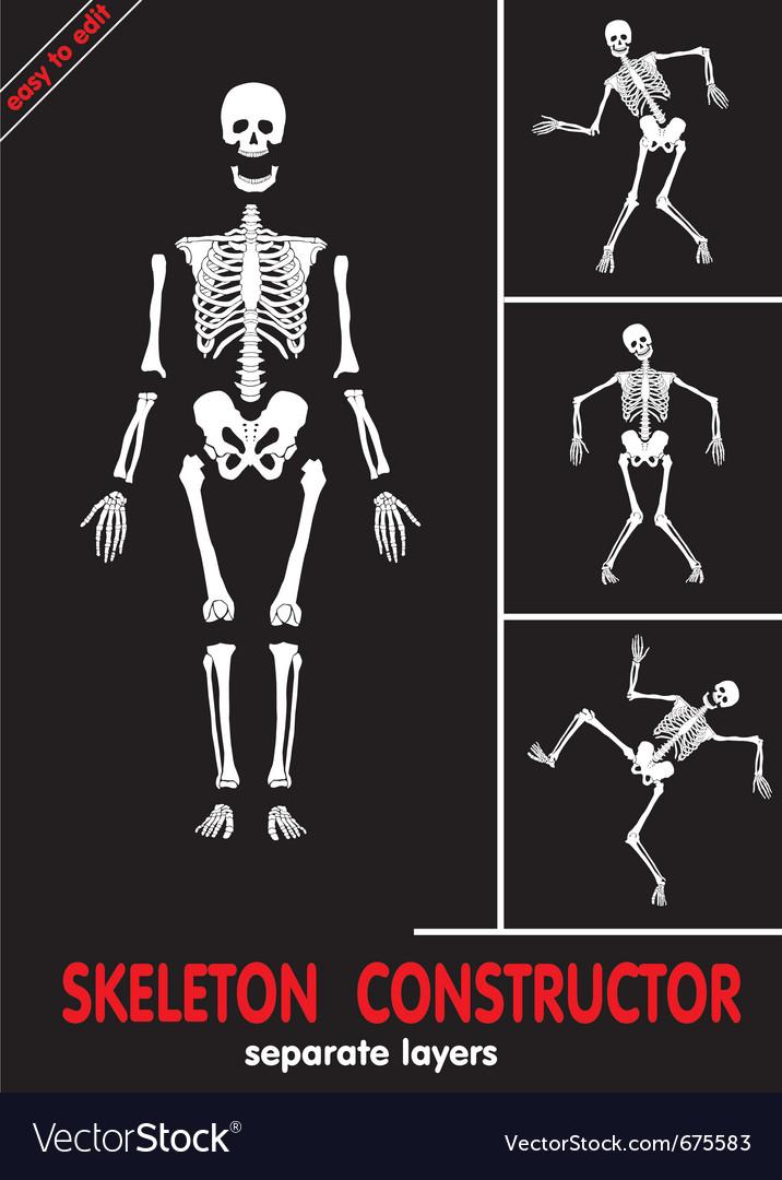 Skeleton constructor vector | Price: 1 Credit (USD $1)