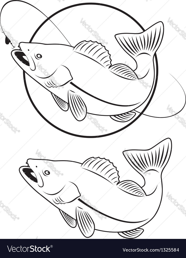 Predatory fish vector | Price: 1 Credit (USD $1)