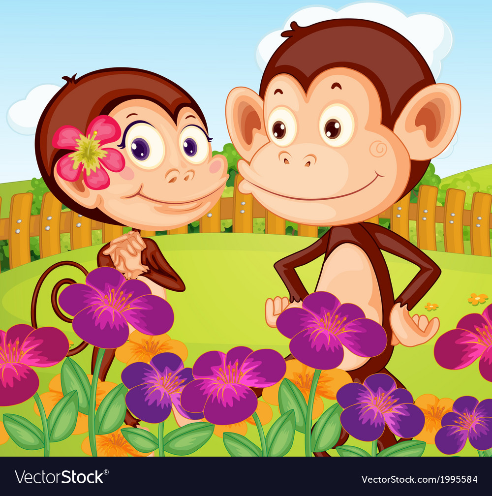 Two monkeys at the garden in the hilltop vector   Price: 3 Credit (USD $3)