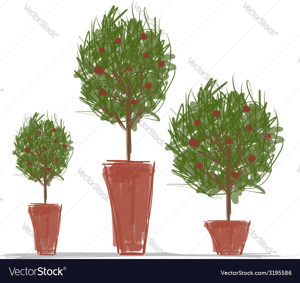 Pots with green tree for your design vector | Price: 1 Credit (USD $1)