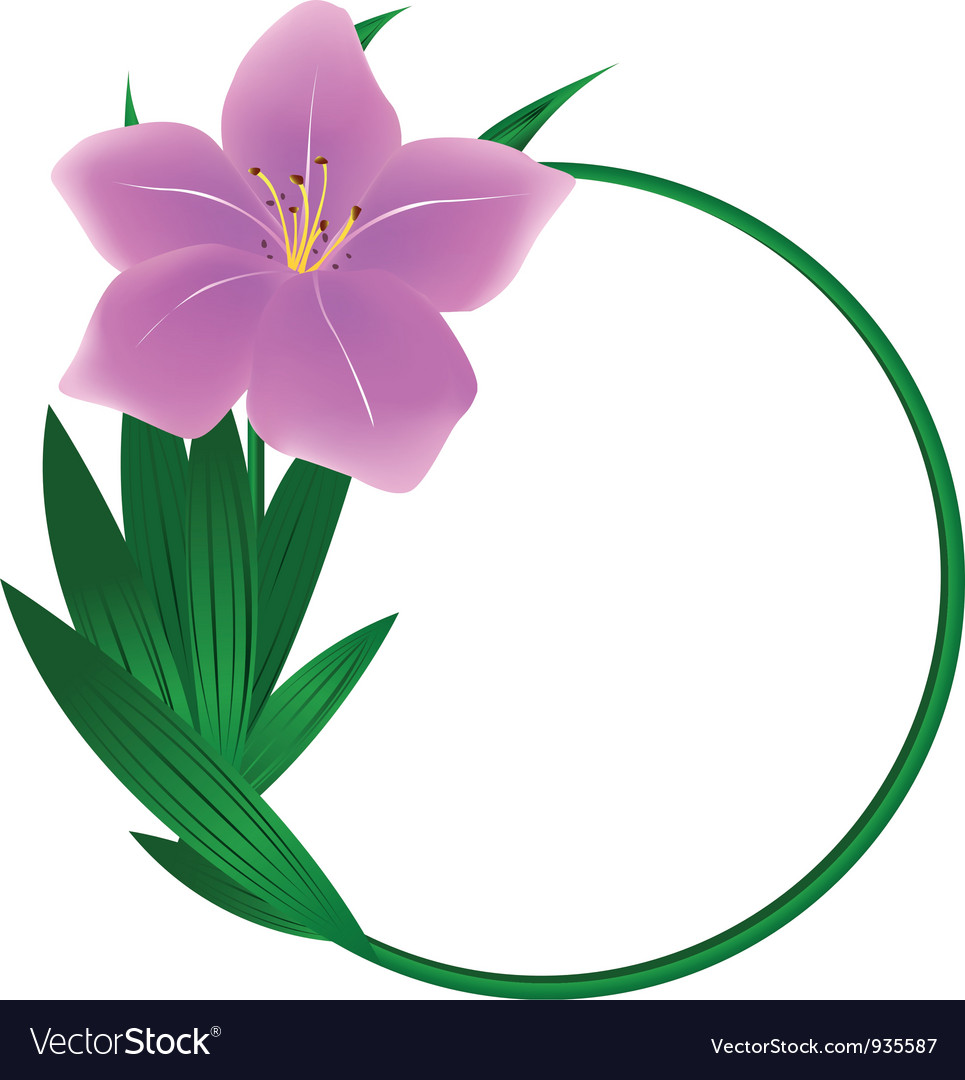 Beautiful round lily flower background vector | Price: 1 Credit (USD $1)