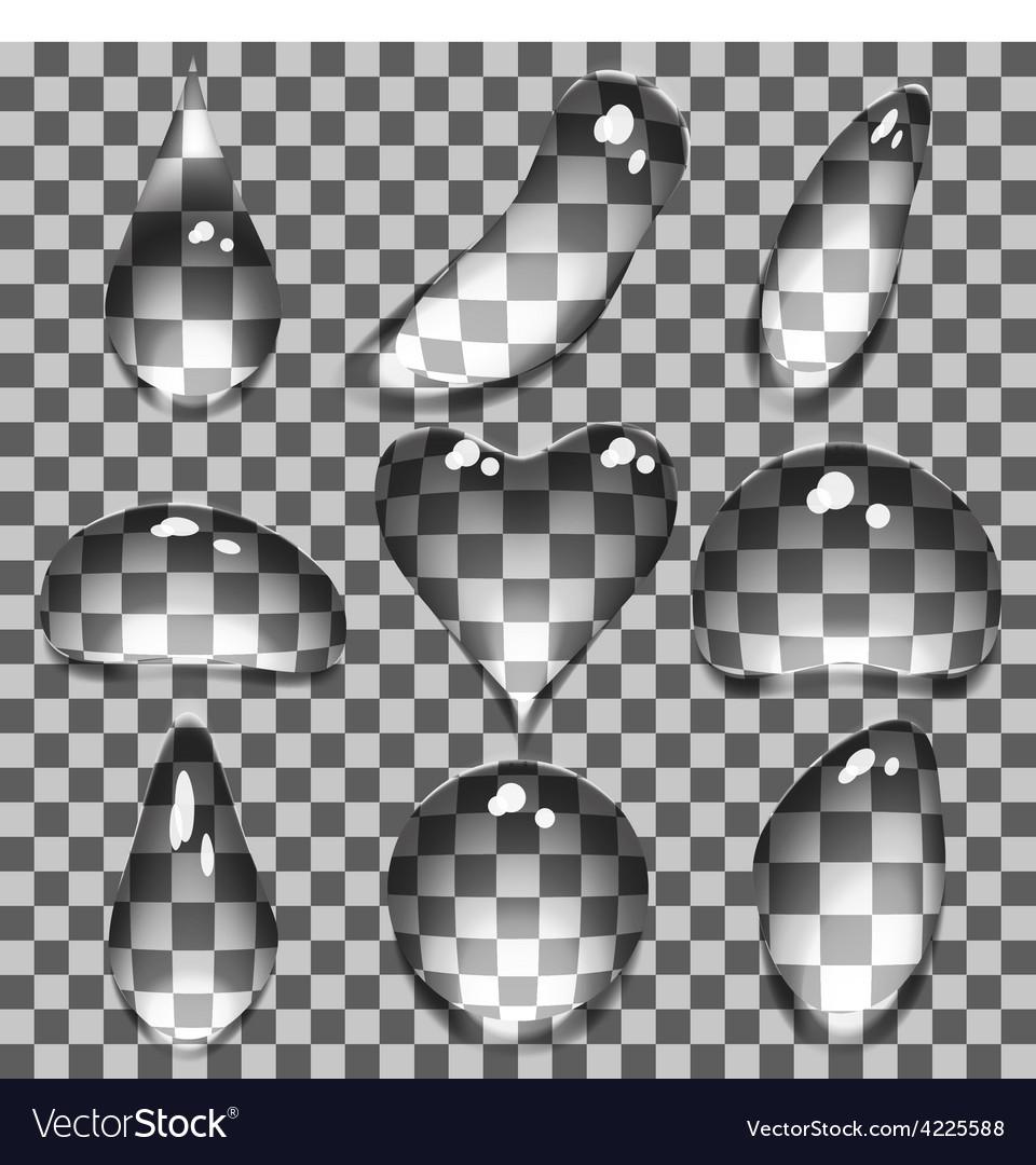 Transparent bubbles vector