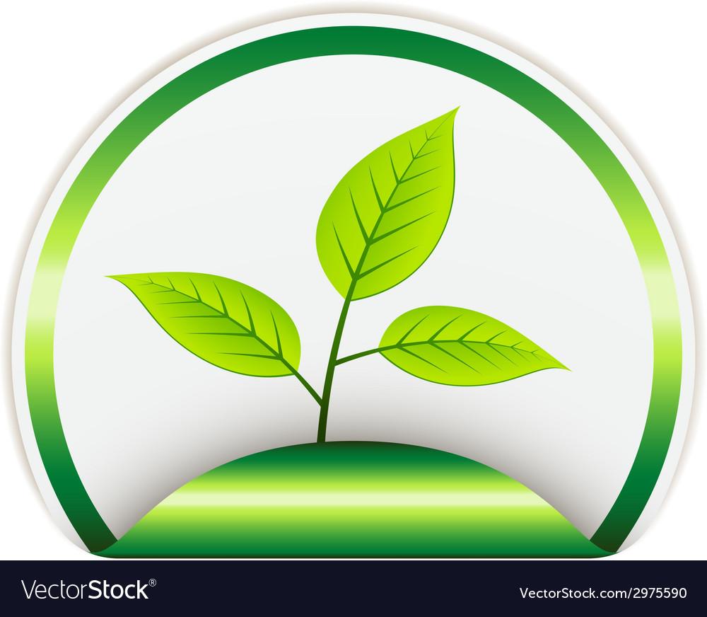 Bio sticker vector   Price: 1 Credit (USD $1)