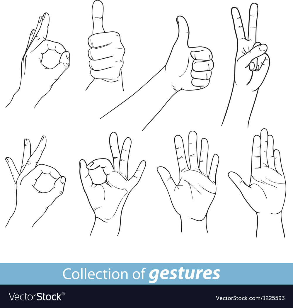Gestures of human hands vector | Price: 1 Credit (USD $1)
