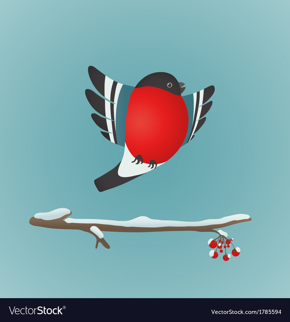 Bullfinch flying and ashberry twig vector | Price: 1 Credit (USD $1)