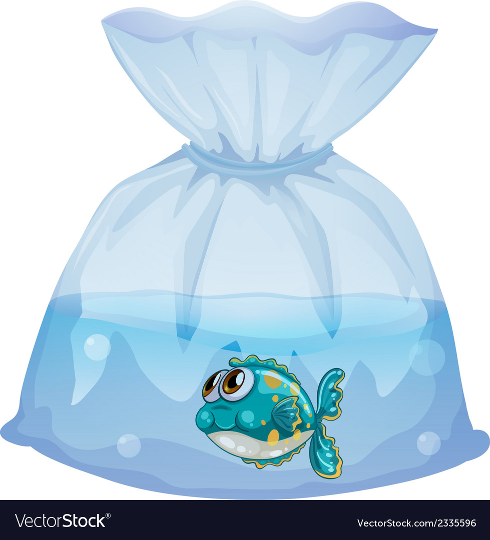 A plastic pouch with a fish vector | Price: 1 Credit (USD $1)