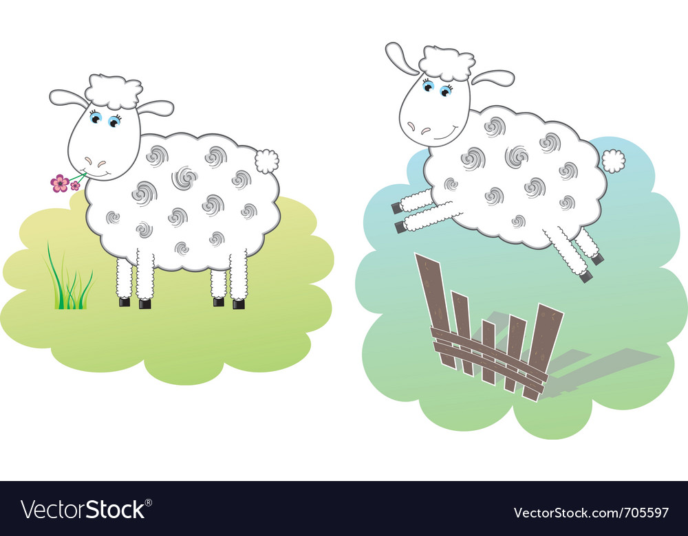 Two white sheeps vector | Price: 3 Credit (USD $3)