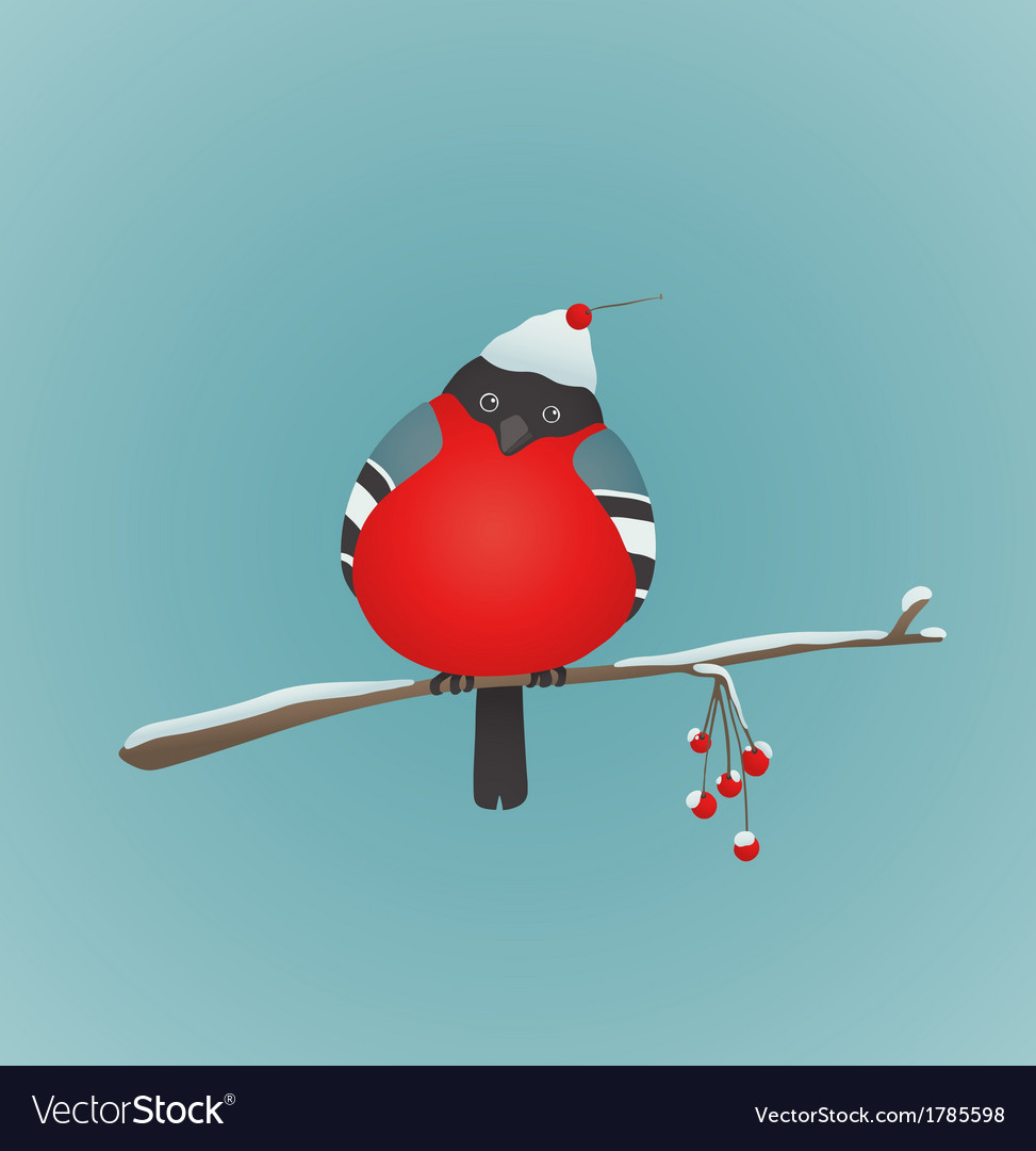 Bullfinch sitting on ashberry twig vector | Price: 1 Credit (USD $1)