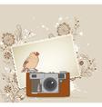 Vintage camera bird vector