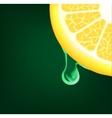 Flowing down drop on a lemon segment background vector
